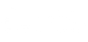 International Institute for Critical Studies in Improvisation